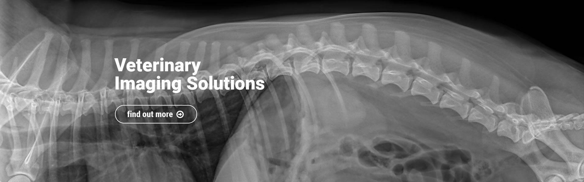 Veterinary Imaging Solutions
